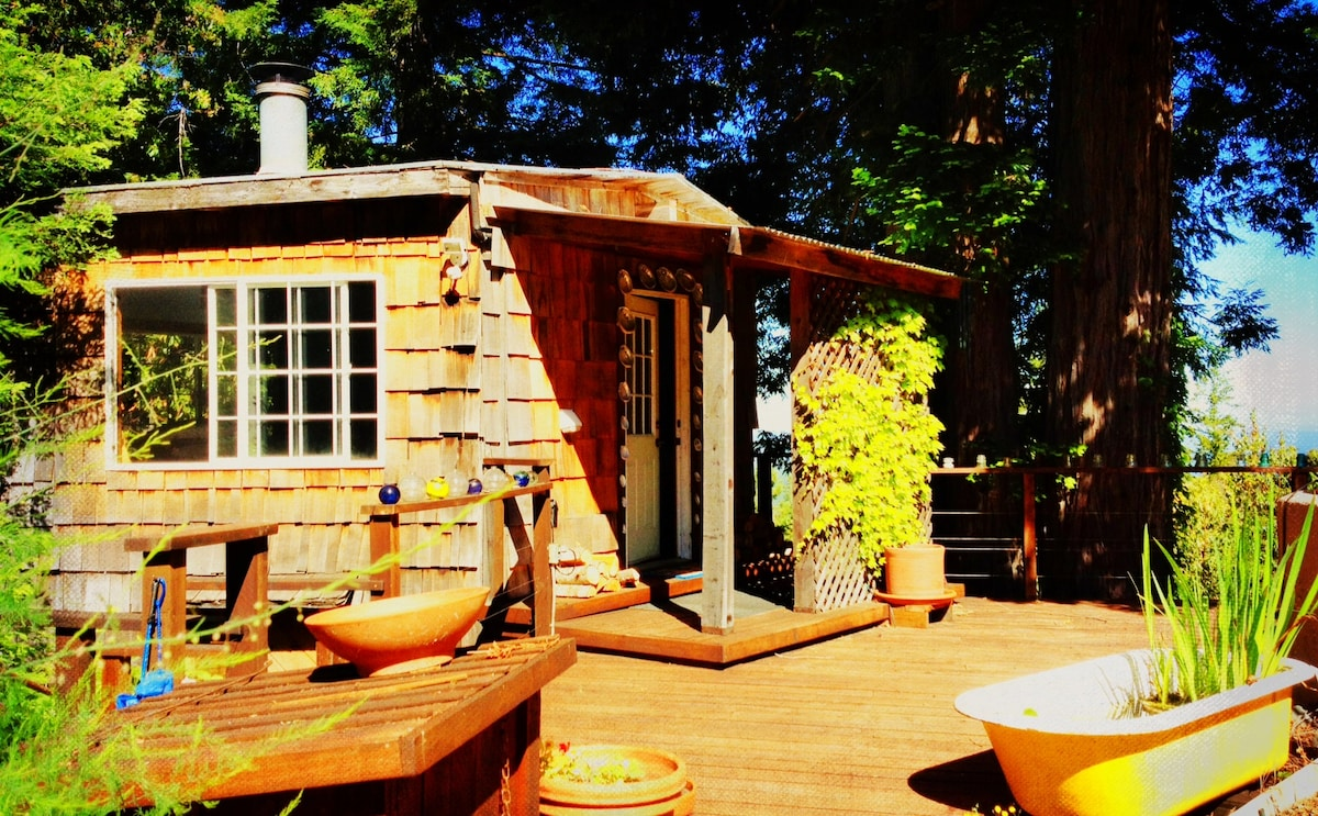 Abalone Cottage - Forested Charm