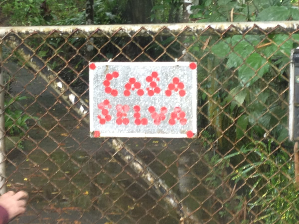 Welcome to Casa Selva (The Jungle Home)