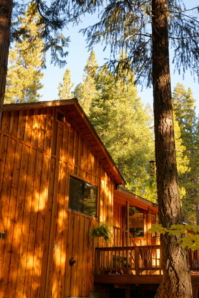 Lovely cedar sided house in the forest at Salmon Creek
