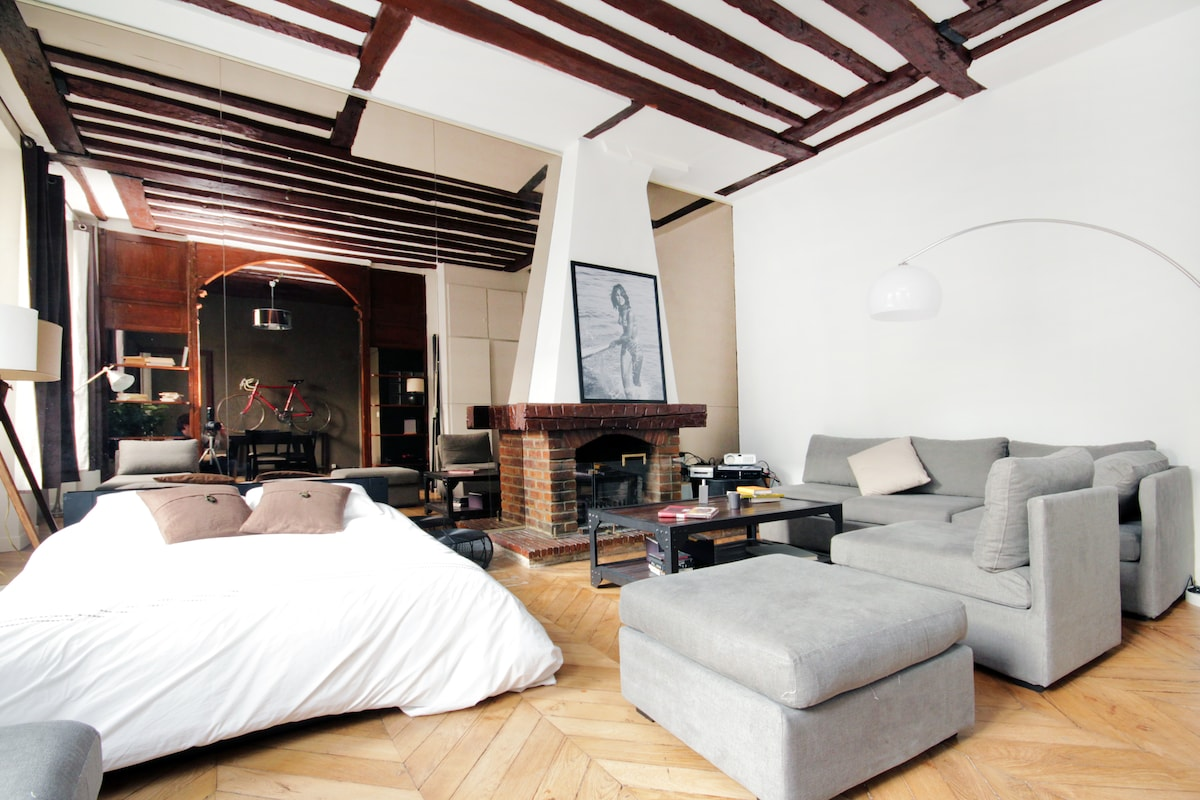 Beautiful Loft in le Marais(540ft2)