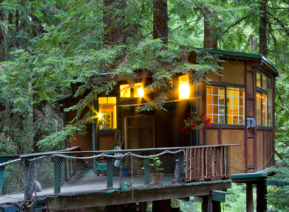 Redwood treehouse santa cruz mtns in watsonville for Airbnb cabins california
