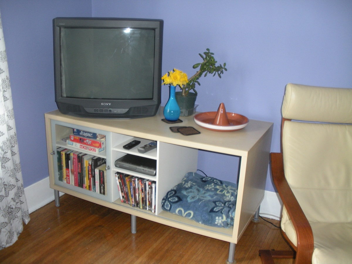 entertainment center with satellite tv, DVD player, movies, books, and games