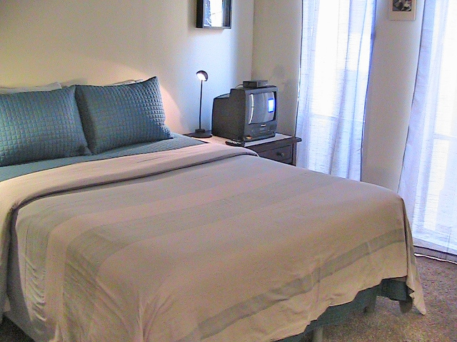 Comfy Private Guest Bedroom