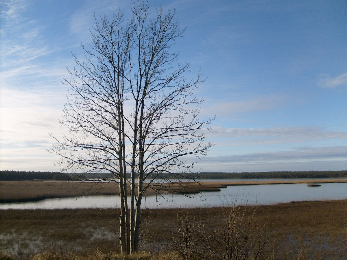 Fardume Lake and bird conservation area