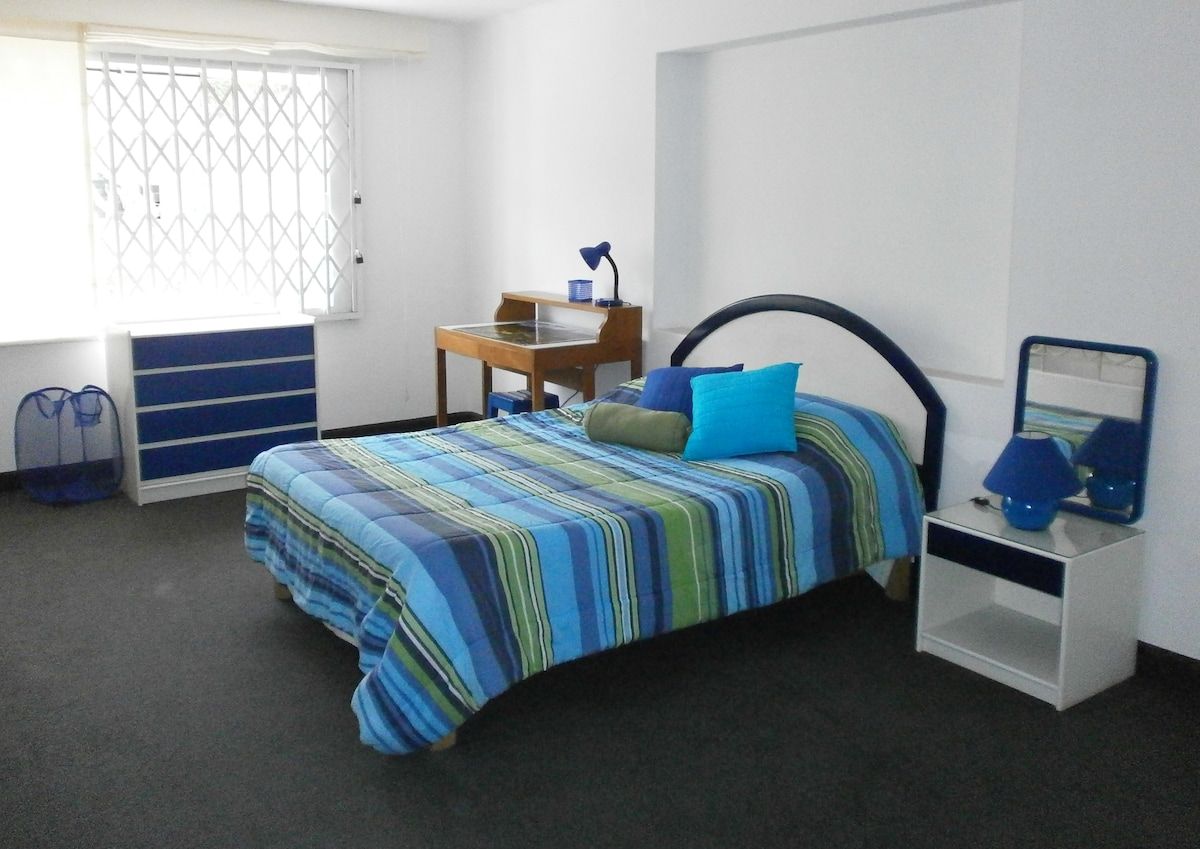 Main bedroom with queen bed; window view to the street.