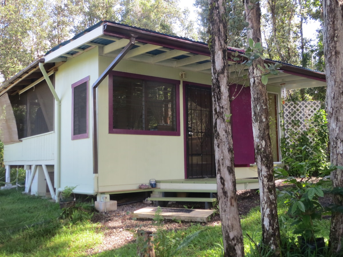 Cabin is surrounded by a forest of ohia trees keeping it cool in summer.