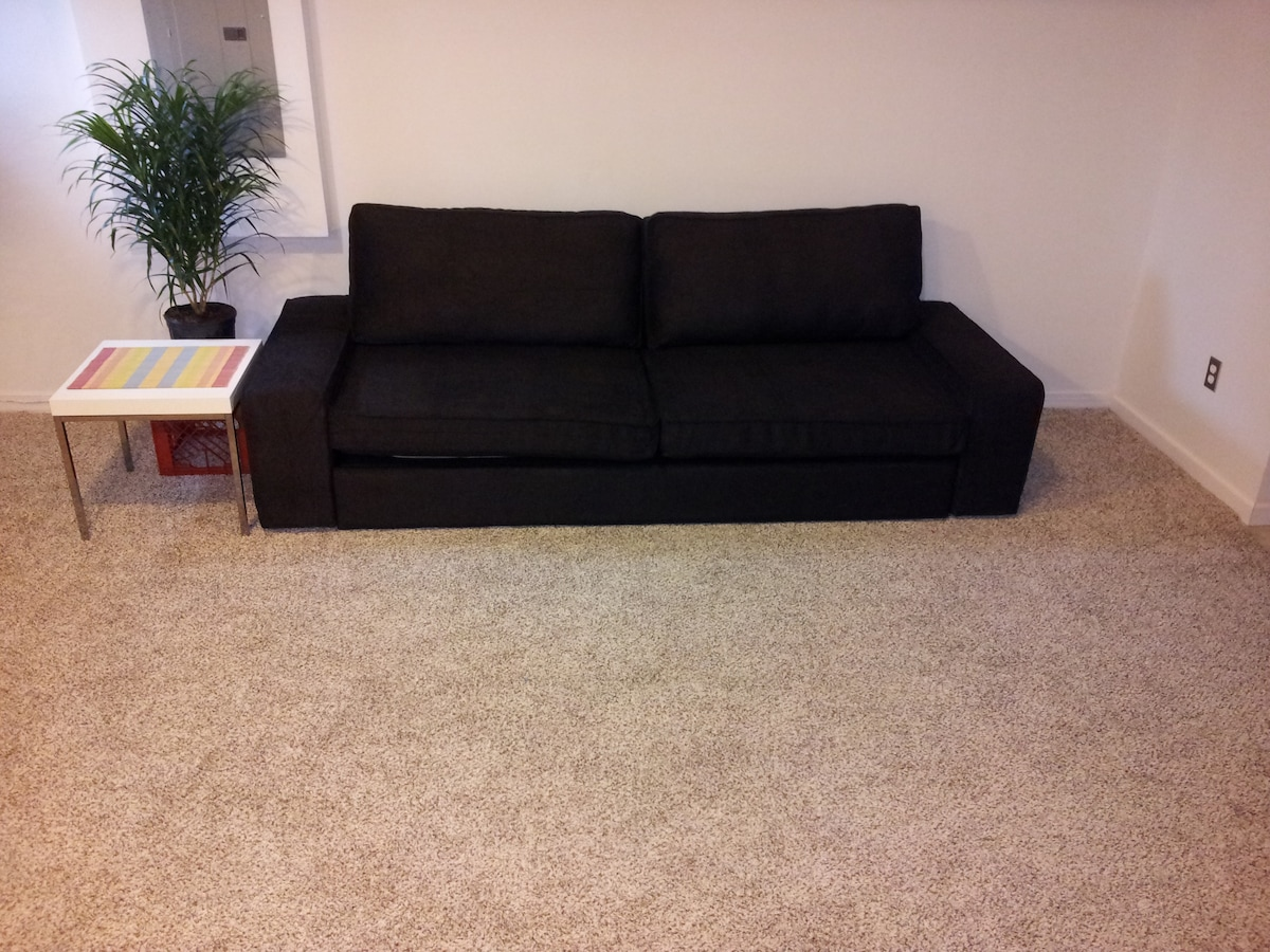 Living room sofa (and Double-sized bed for 2 adults, if needed)...