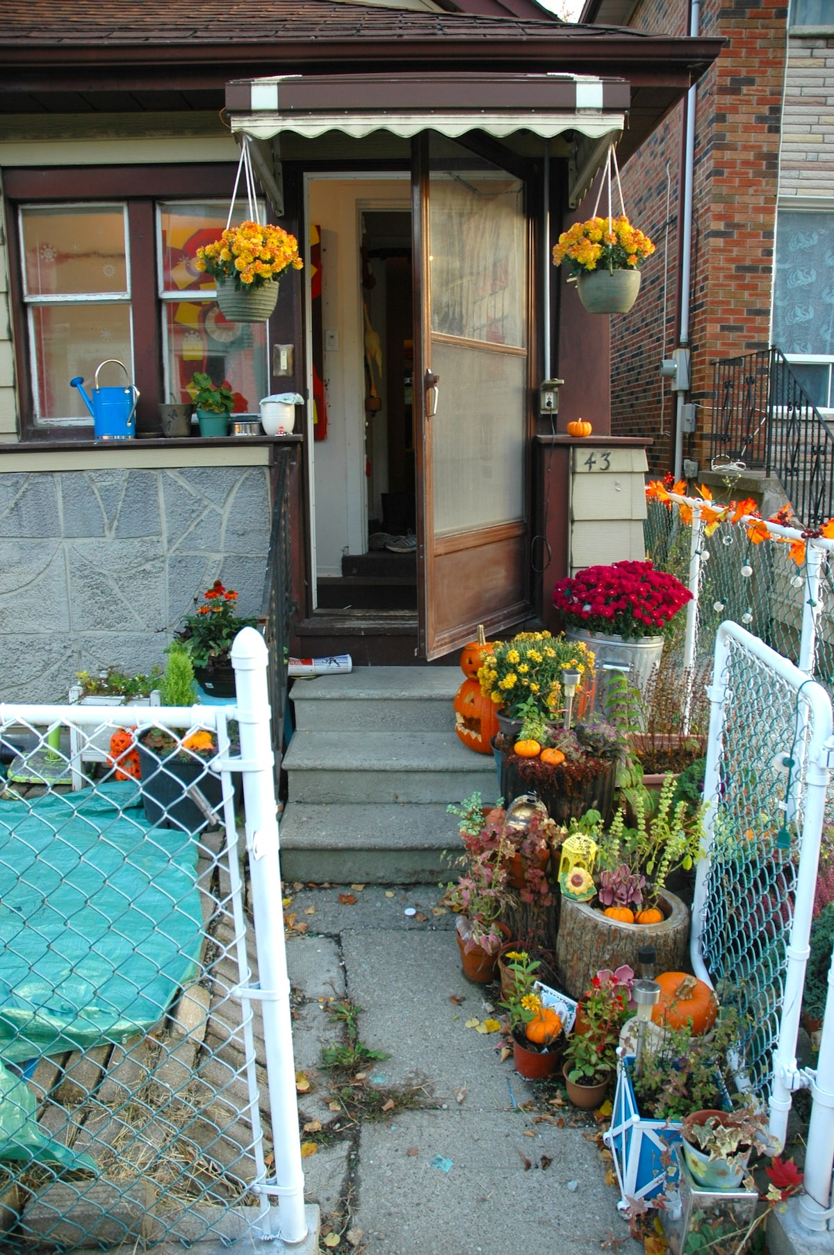 A little bit of love leading up the door. finally got my little garden going in the front:)