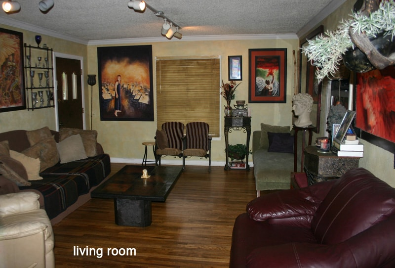 Living Room: Artistic, relaxed, hardwood floors, TV, DVD, Netflix, 2 couches.