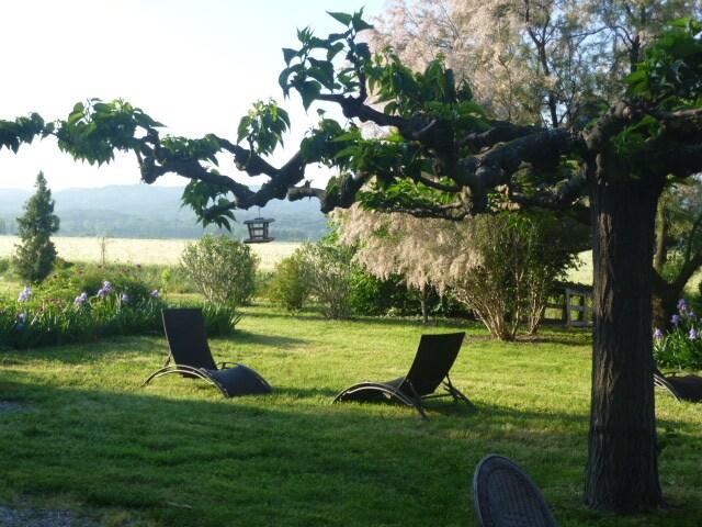 Country Duplex StRemy/Arles/Avignon