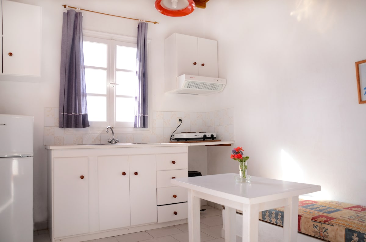 Large Apartment for 2-3 near Ornos