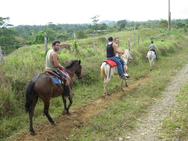 Horseback riding in the farm