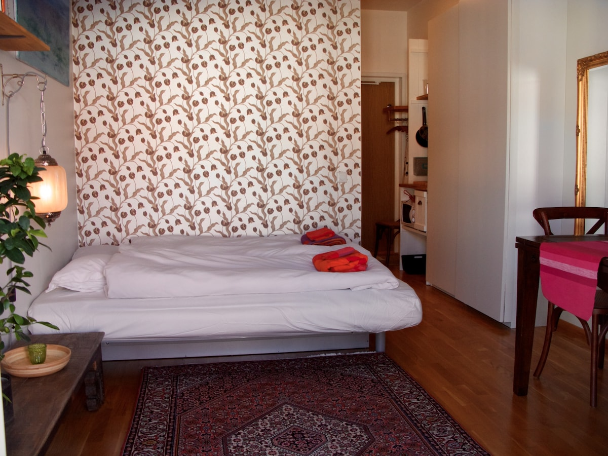 Cosy study close to Stockholm City. Kitchenette, shower, balcony and high speed internet. Sleeps two.