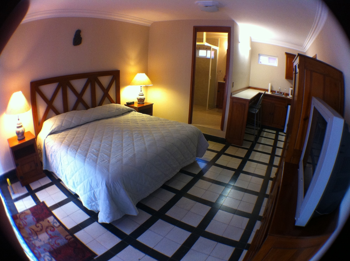 Guest suite - king size bed, private bathroom, and kitchenette