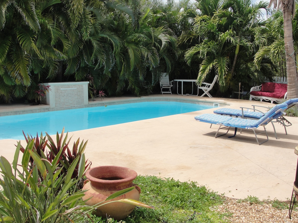 View of the pool looking from the house