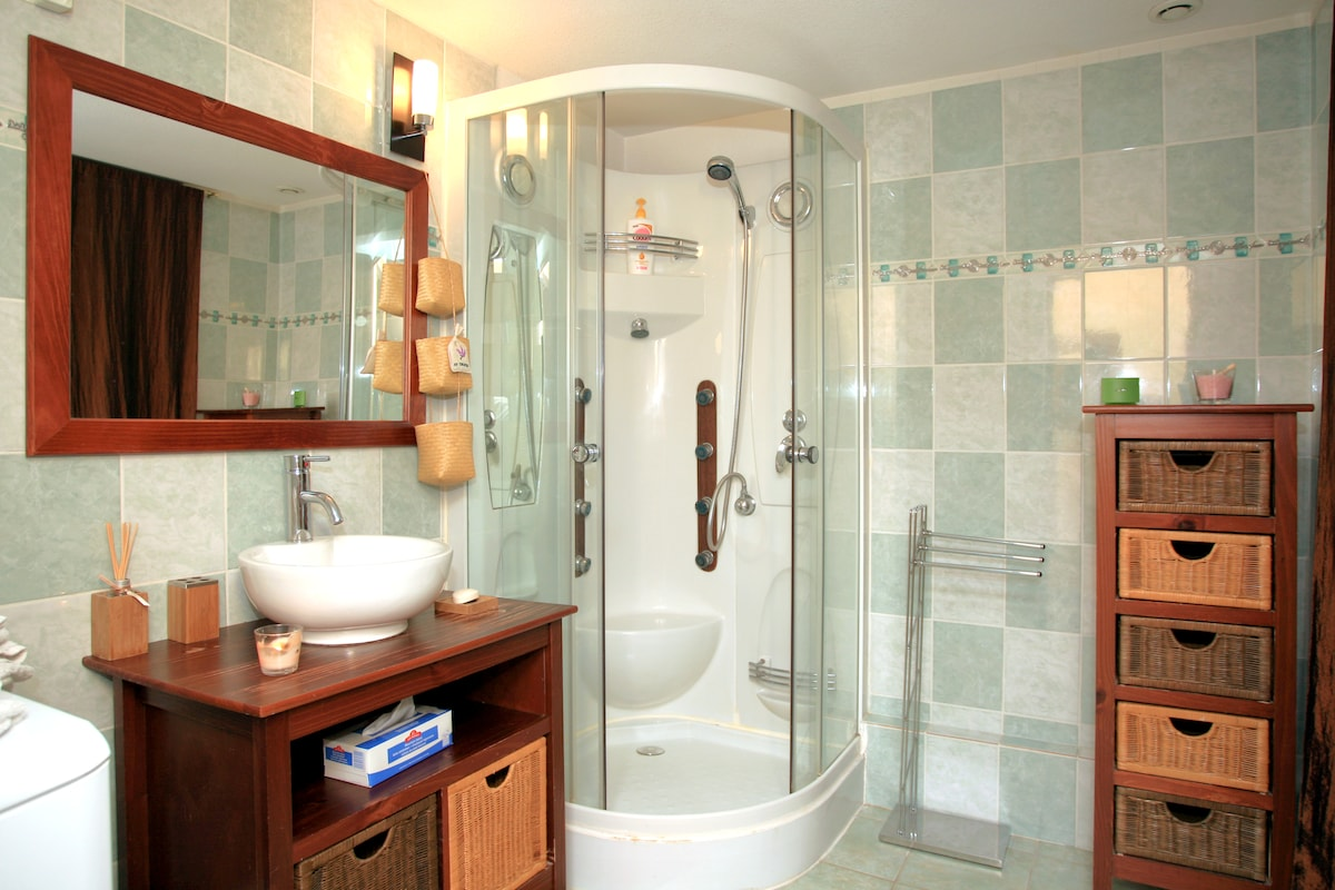 The bathroom and the spa shower