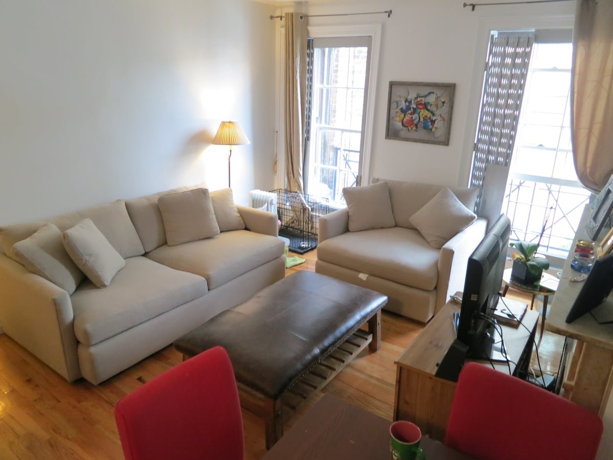 West Village Sunny Spacious One BR
