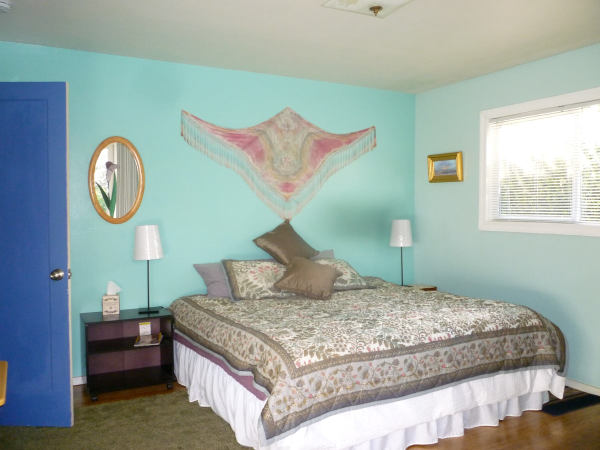 bright room, king size bed, door to back yard