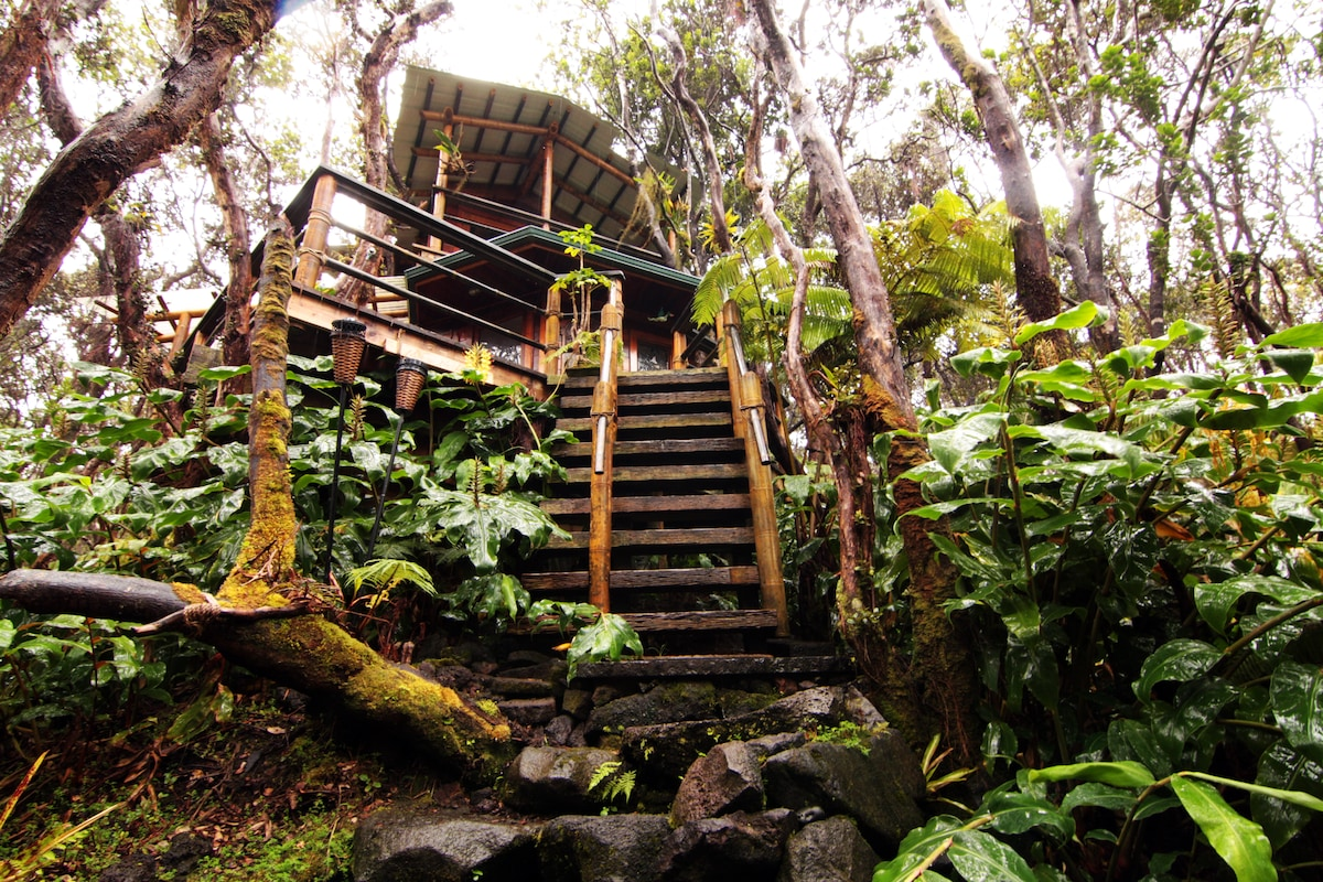 Treehouse at Kilauea Volcano