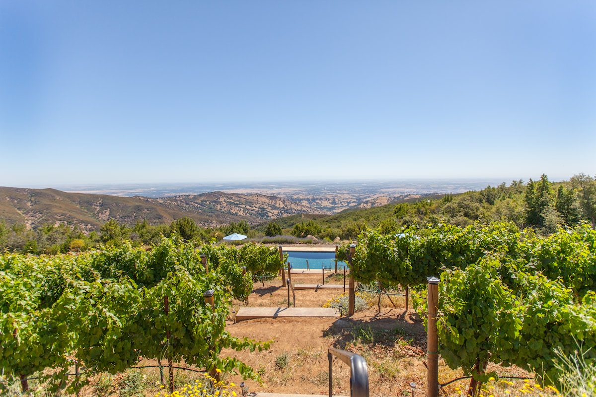 Malbec vineyard, pool and fabulous view as you stroll down to pool