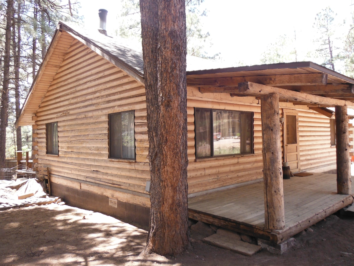 Room @ rustic cabin among the pines