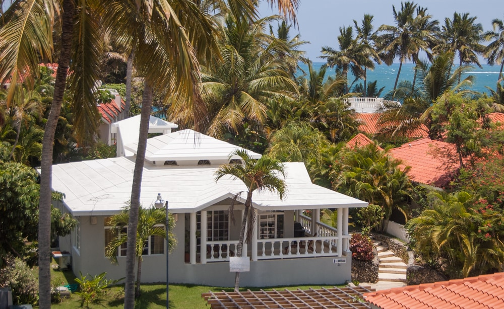 Our Villa Quebecoise with old growth palm trees and sparkling ocean in the back.