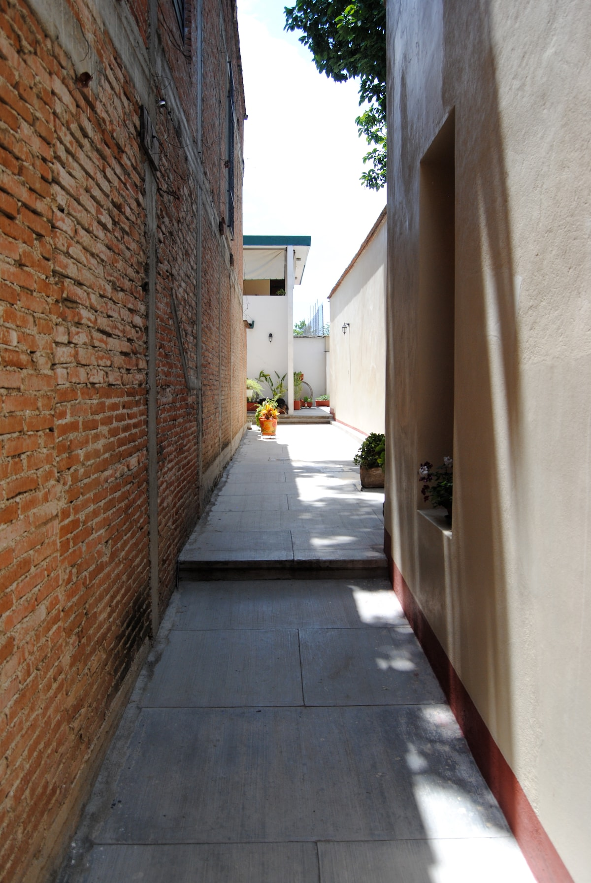 Walkway to the house.