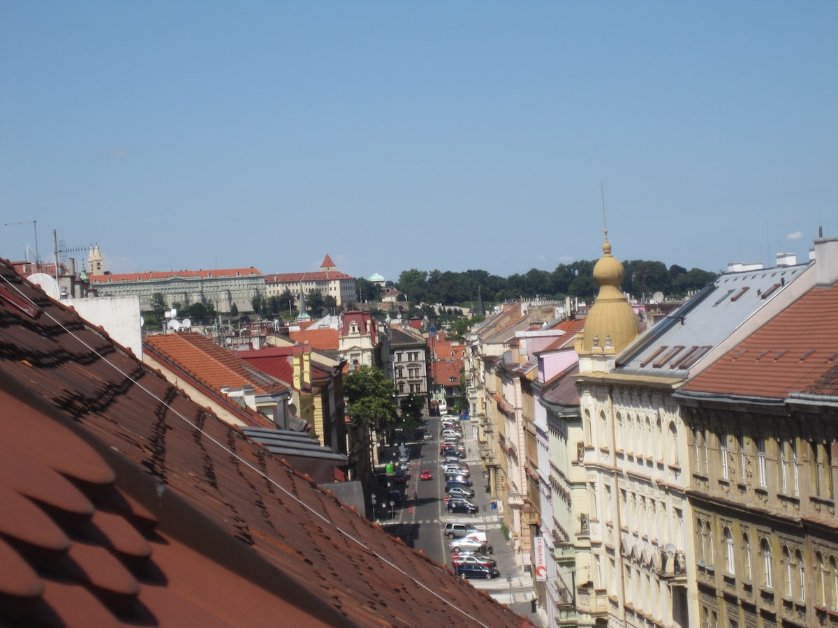 Prague Castle view from the apartment