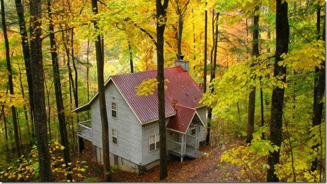 This is The Dogwood Cabin during a typical fall day.