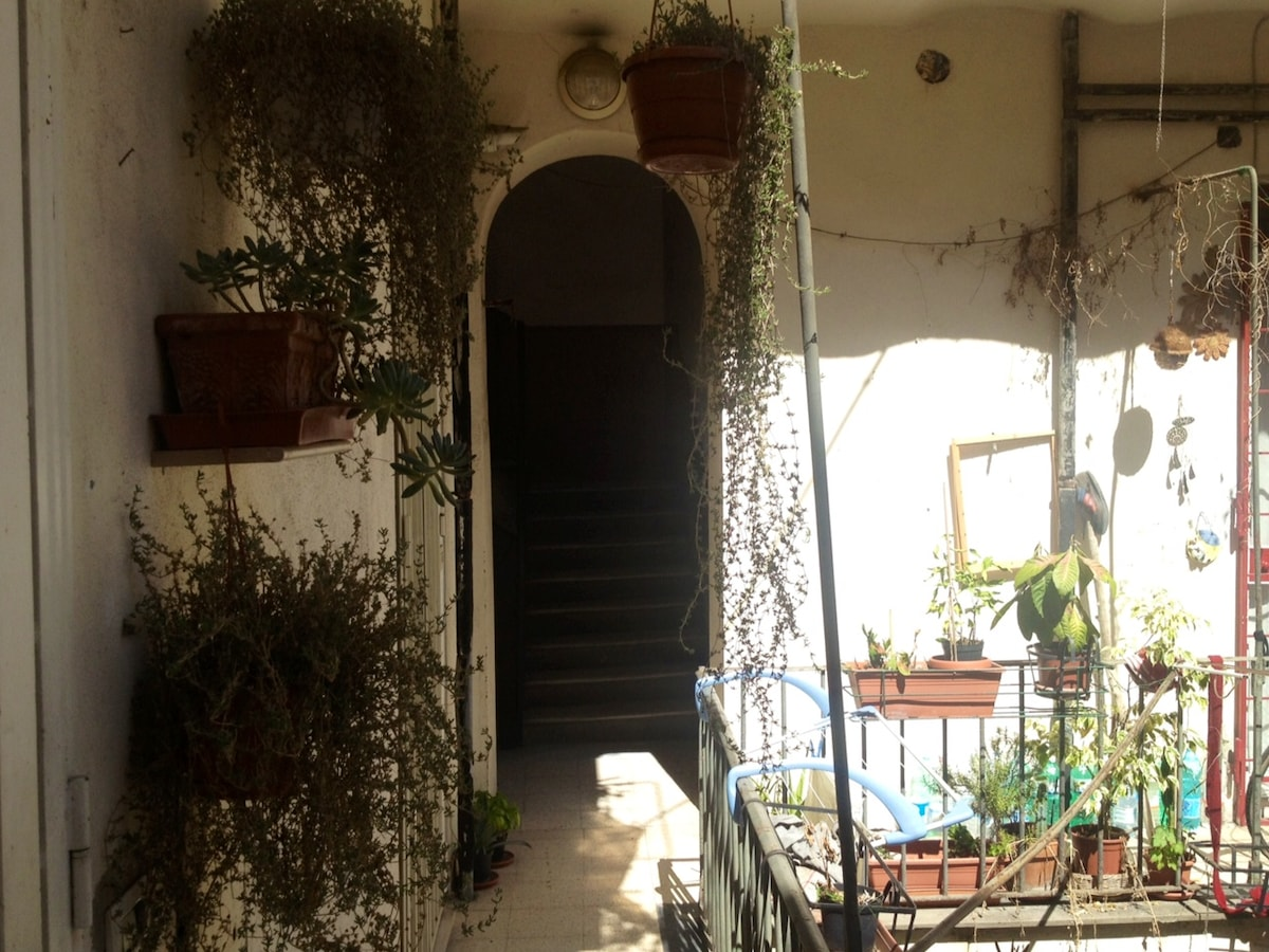 plants in the entrance balcony