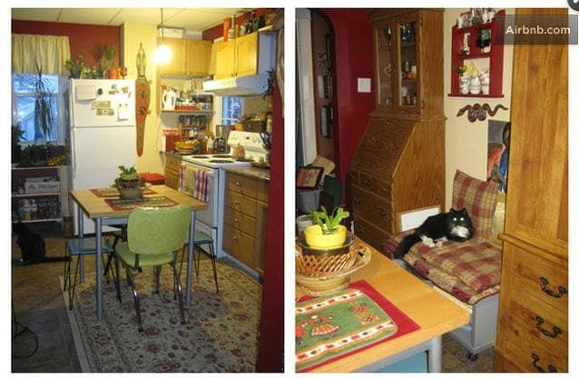 """Here's a couple pix of the shared kitchen, including our resident feline """"Bug"""" (she's very old & friendly)."""