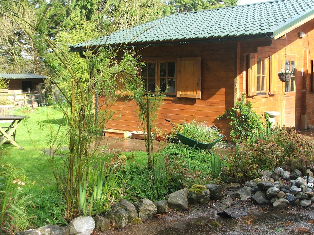 COSY WOODEN CABIN, LAKE VIEW, RURAL