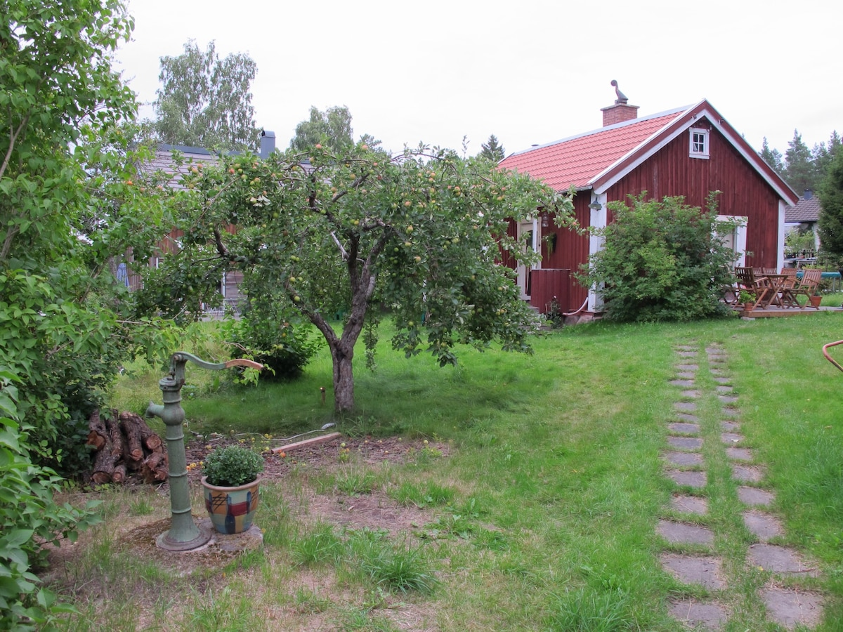 Summer, Entrance with Elder flower beside  the wodden flooring and Apple tree in the foreground. Surrounded by Lilac plants.