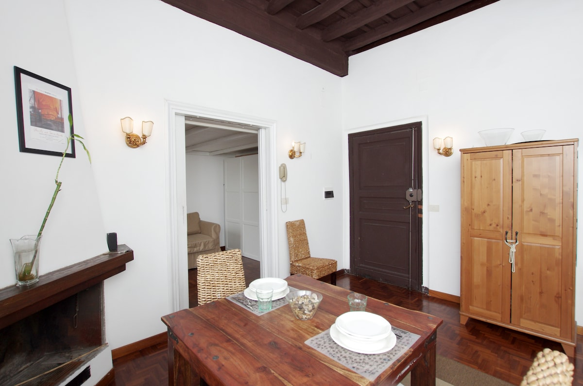 Lungara, lovely flat in trastevere