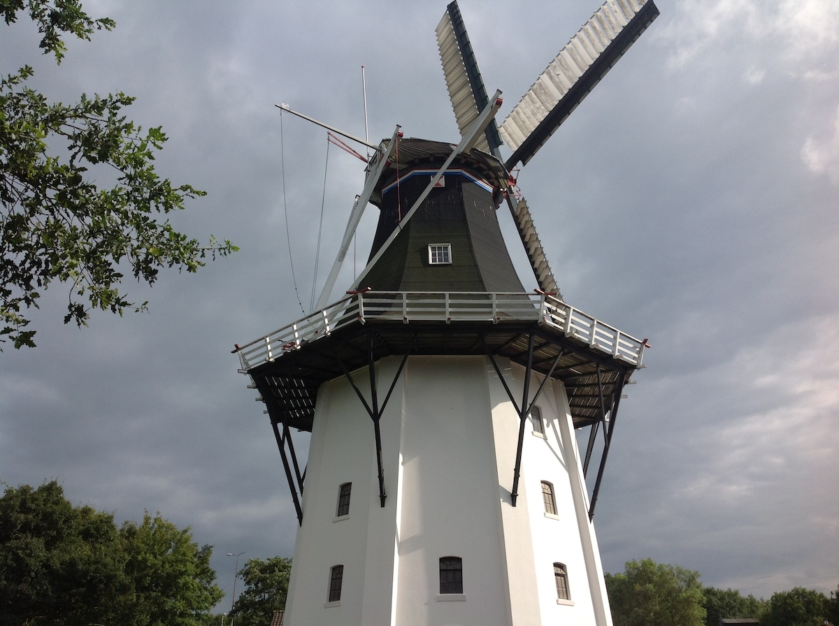 The highest mill from Groningen Wilhelmina mill
