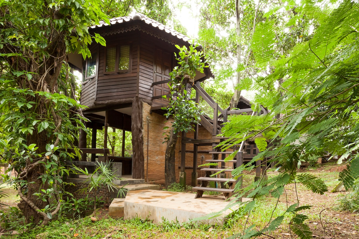 Tree House 10 mins drive fr center