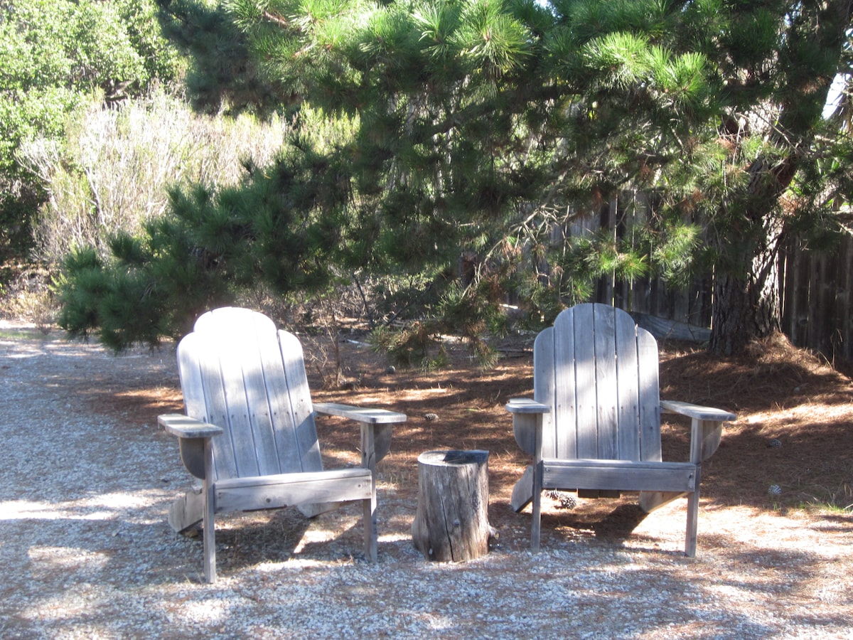 Adirondack chairs in front of the house get sun in the morning and afternoon