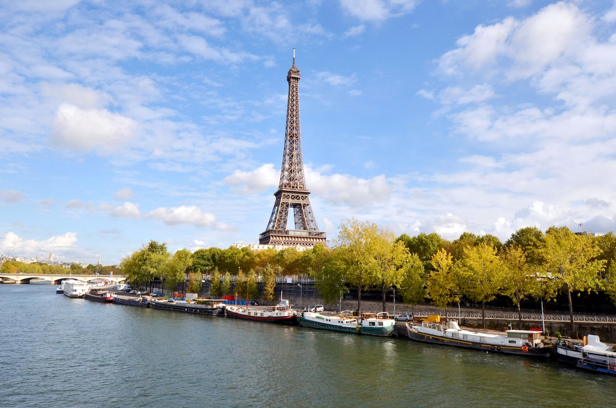 "Listed in Louis Vuitton cityguide for Paris as ""the best accomodation on a houseboat in Paris""."