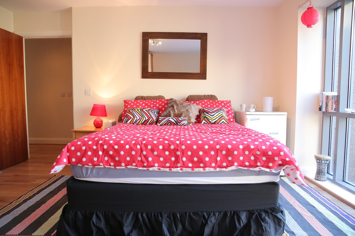 Large En Suite Room in Dublin City!