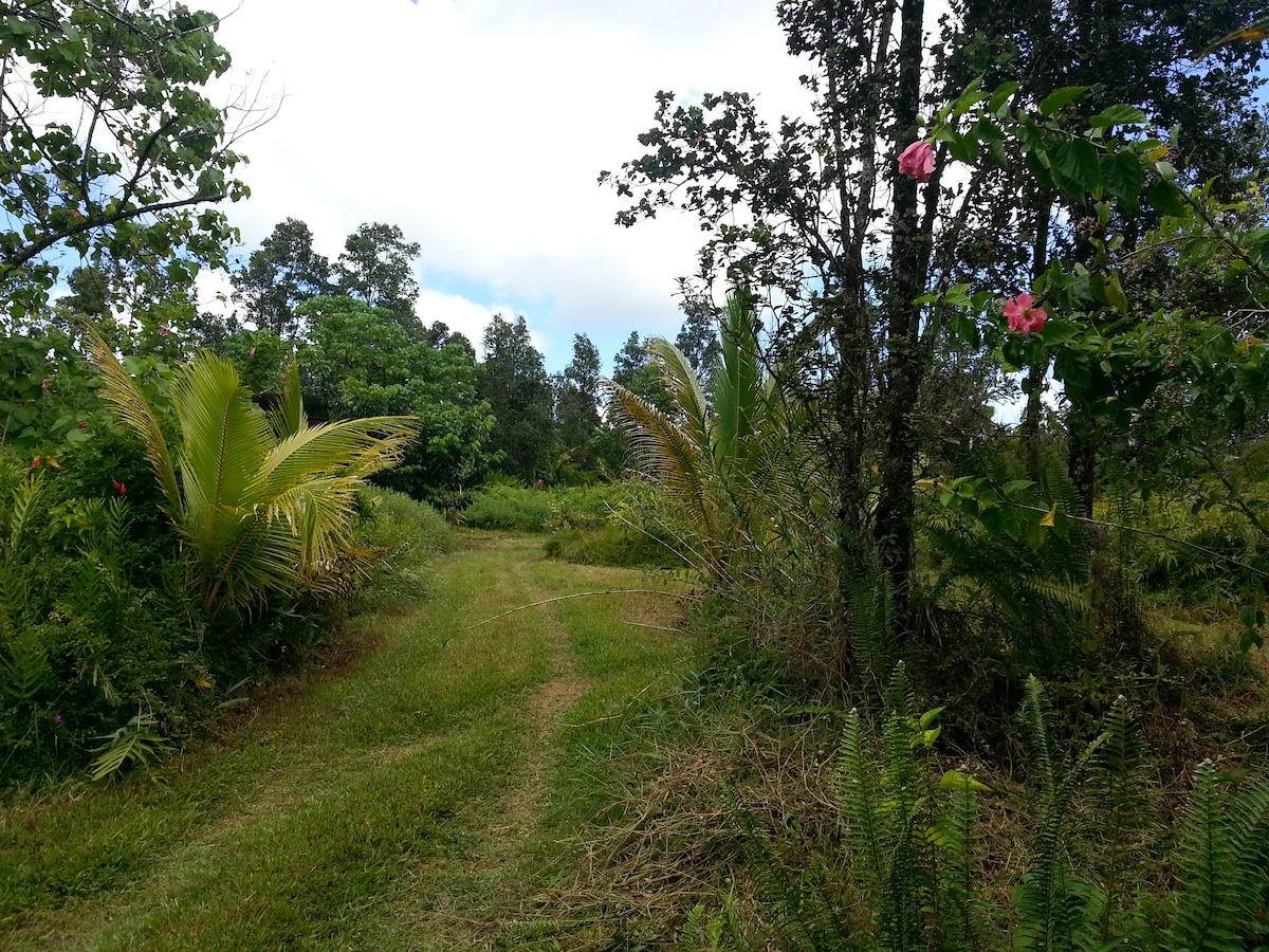 Back half acre