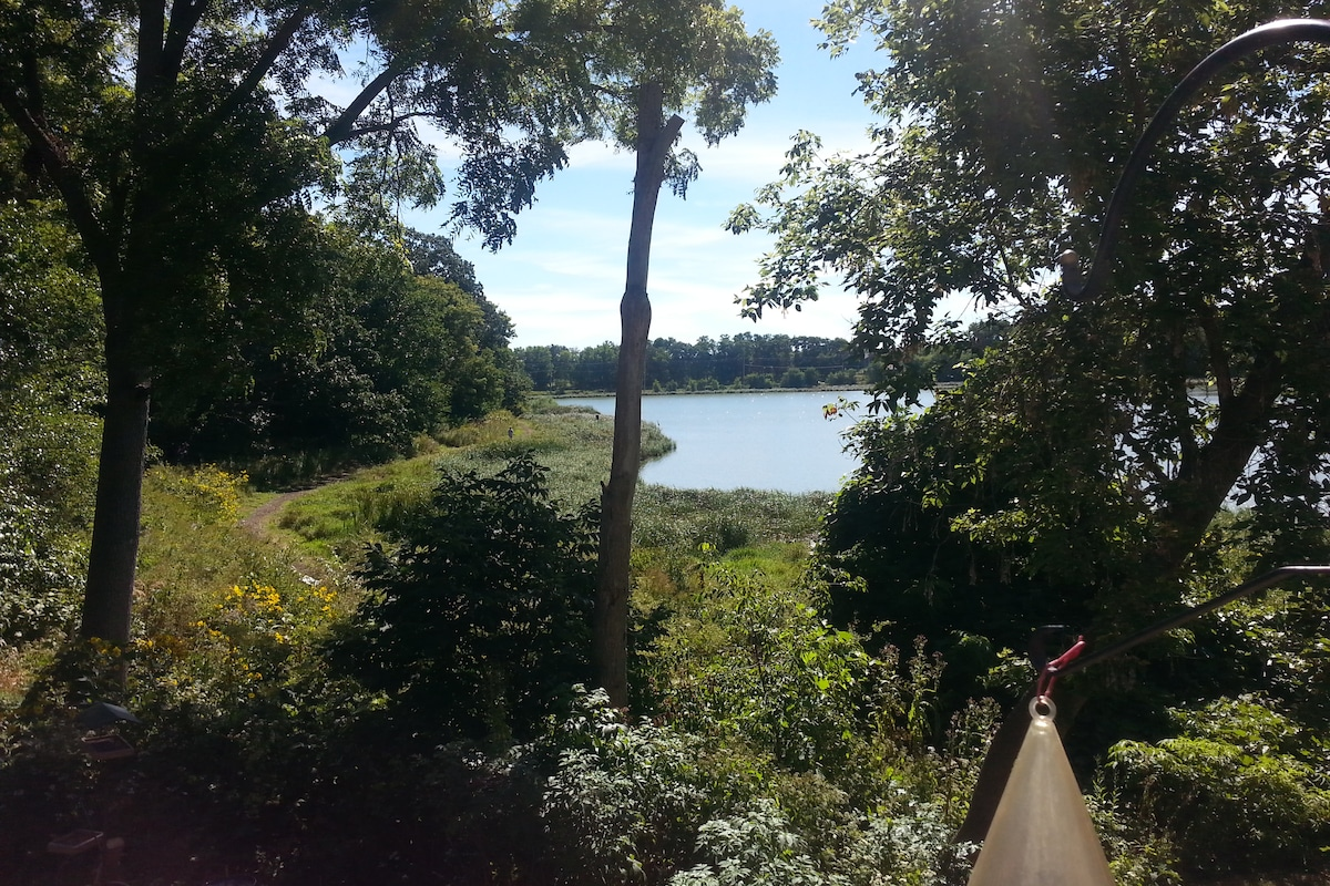 Summer view from the front deck~