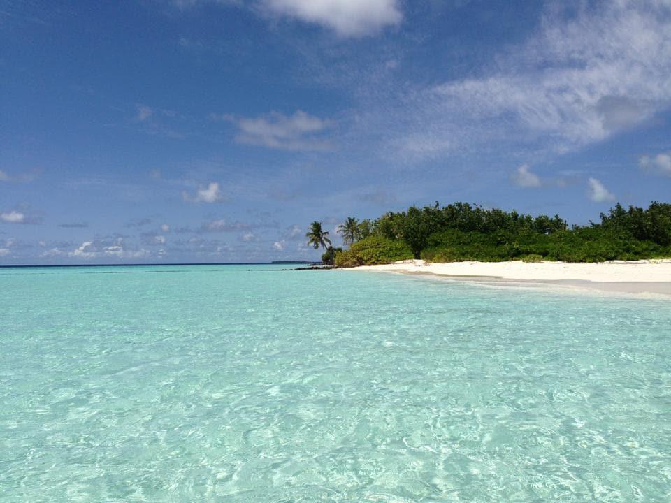 picnic island