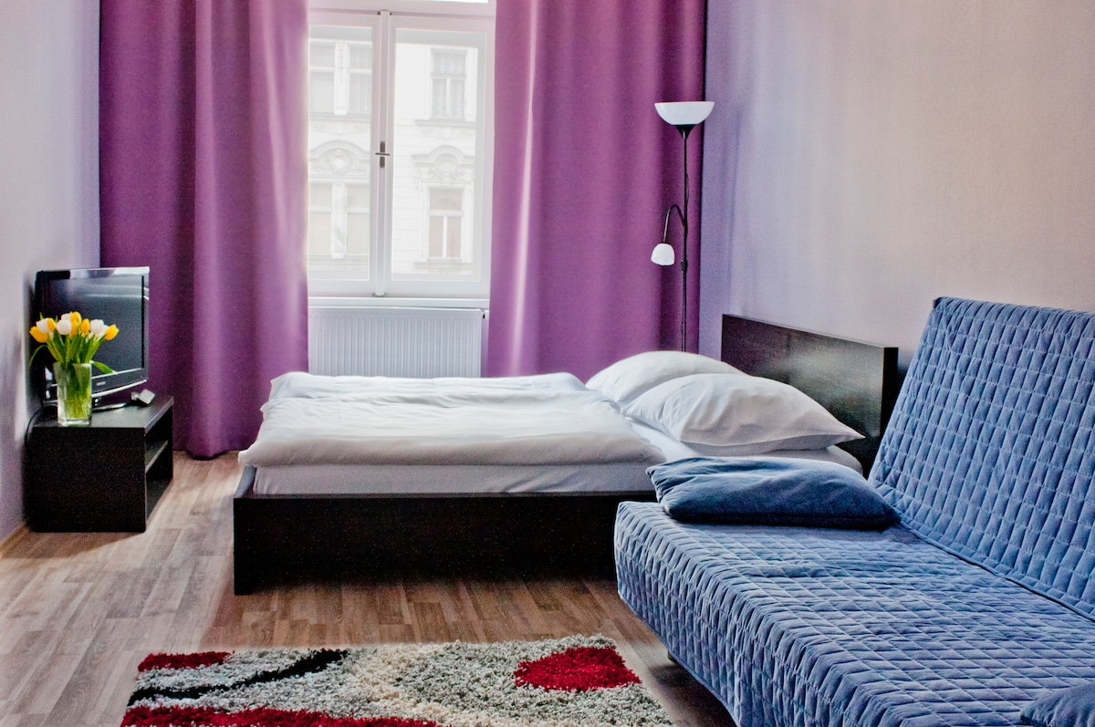 STUDIO APARTMENT IN PRAGUE CENTER