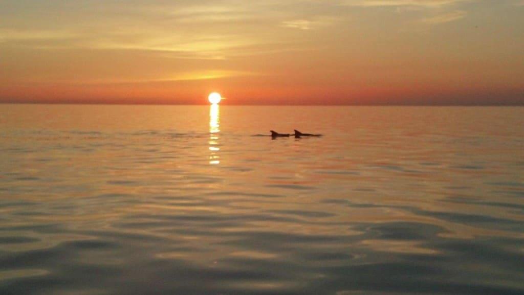 Sunset from upper deck on Free Spirit