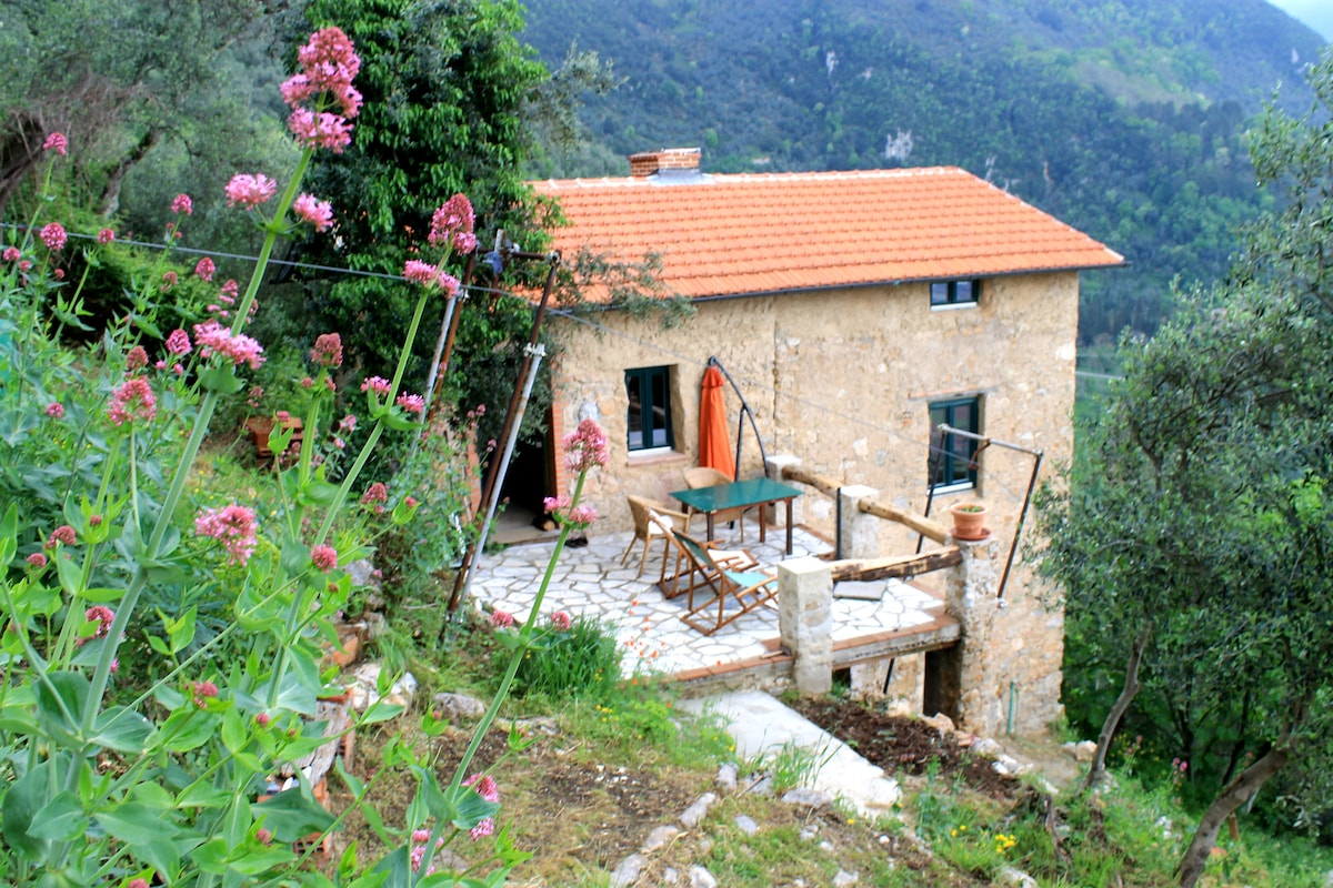 Casa Berti - nice holiday cottage