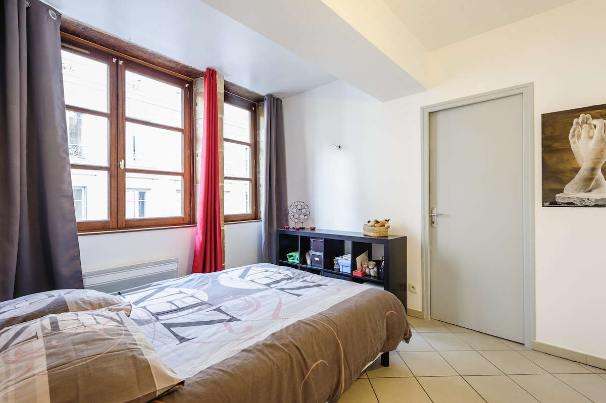 Nice apartment in the heart of Lyon
