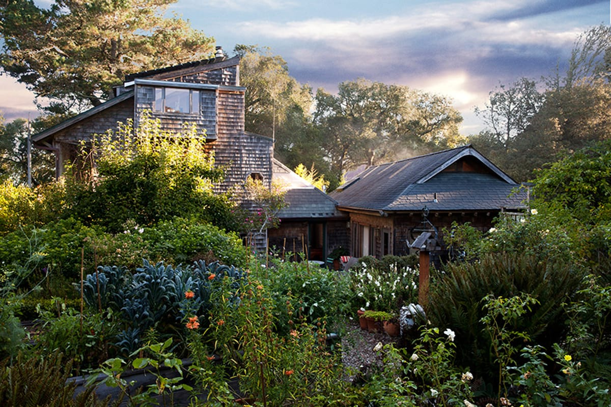 The Eco Refuge House's rear elevation is engulfed by a thriving edible garden. Just outside the house, at the garden's edge, is an intimate dining area. Photo by Richard Olsen.