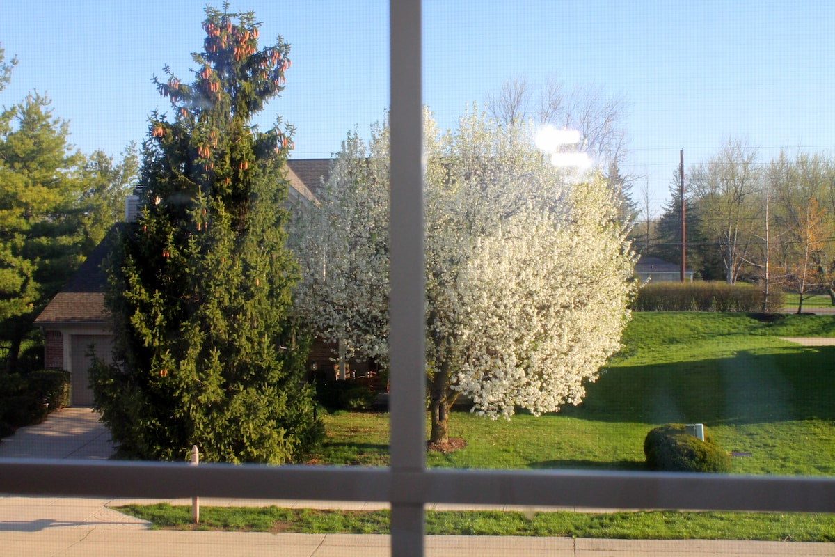View from Bohemian Room (Guest Room) in Spring
