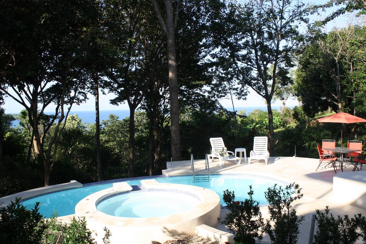 Villa Pochote pool