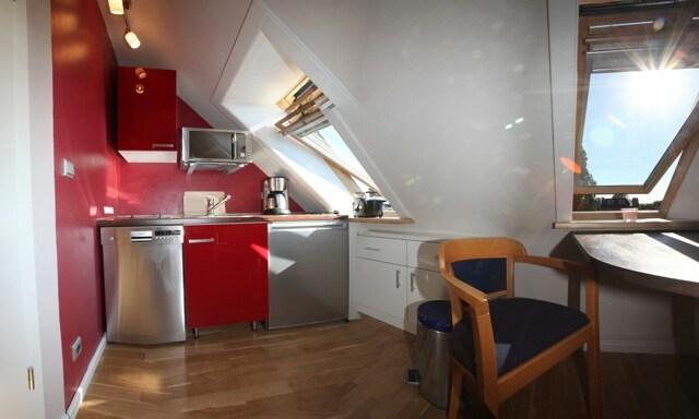offene Küche mit Herdplatten, Spülmaschine, Microwelle, Kaffeemaschine, etc....
